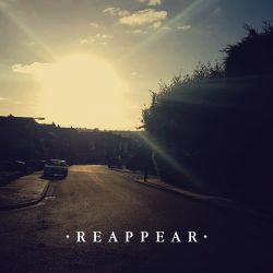 Reappear - Paper Shop Dave